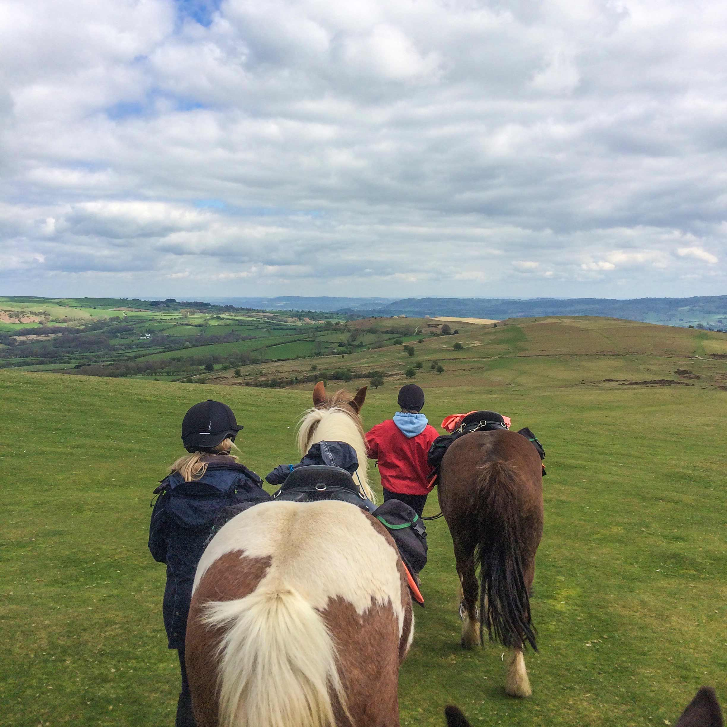 Riders have a final leg stretch on the Begwns before returning to Freerein HQ