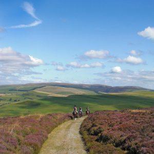 horse riding holidays old drovers trail