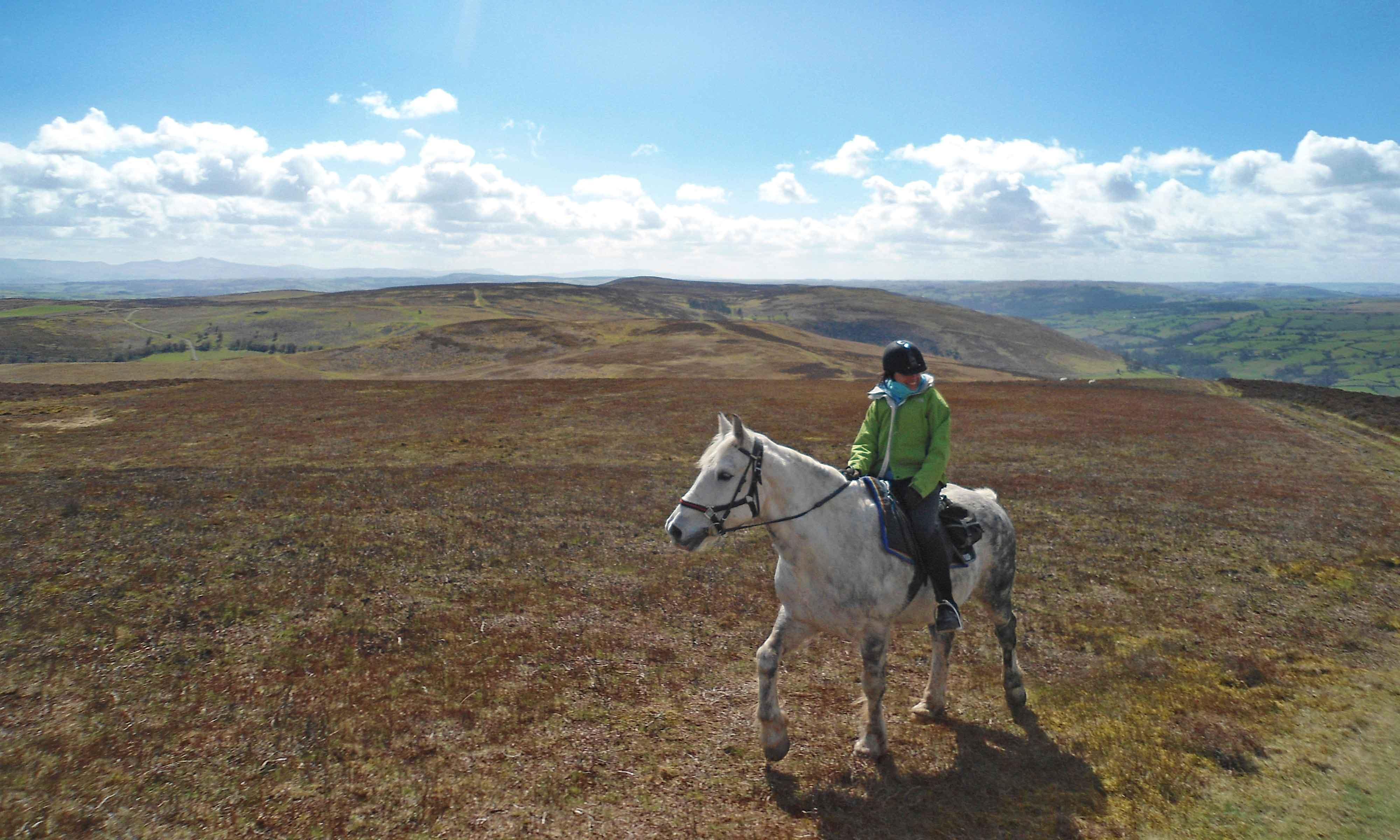 Radnor Fforest horse riding holiday