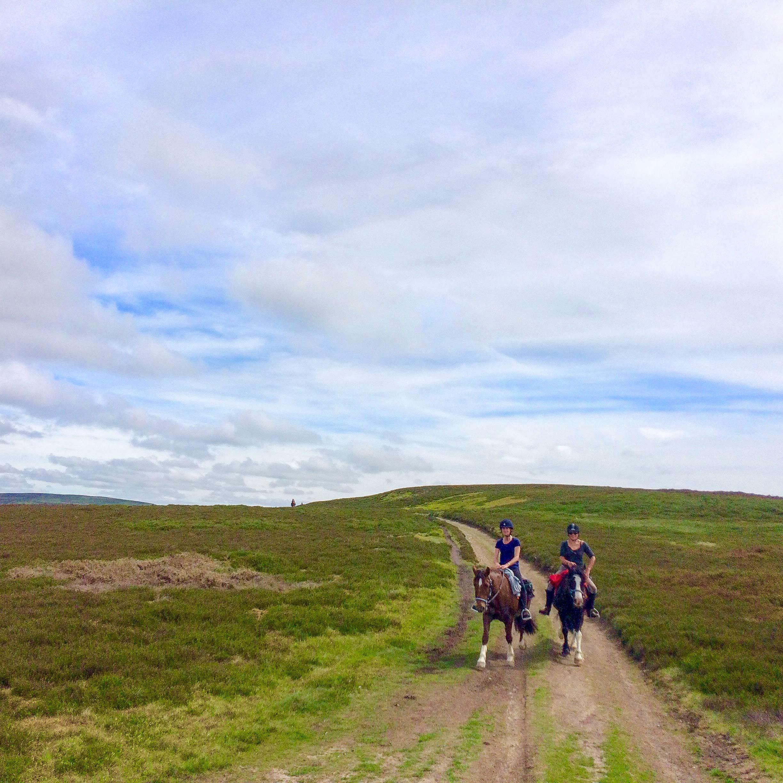 horse riding holidays radnor fforest trail