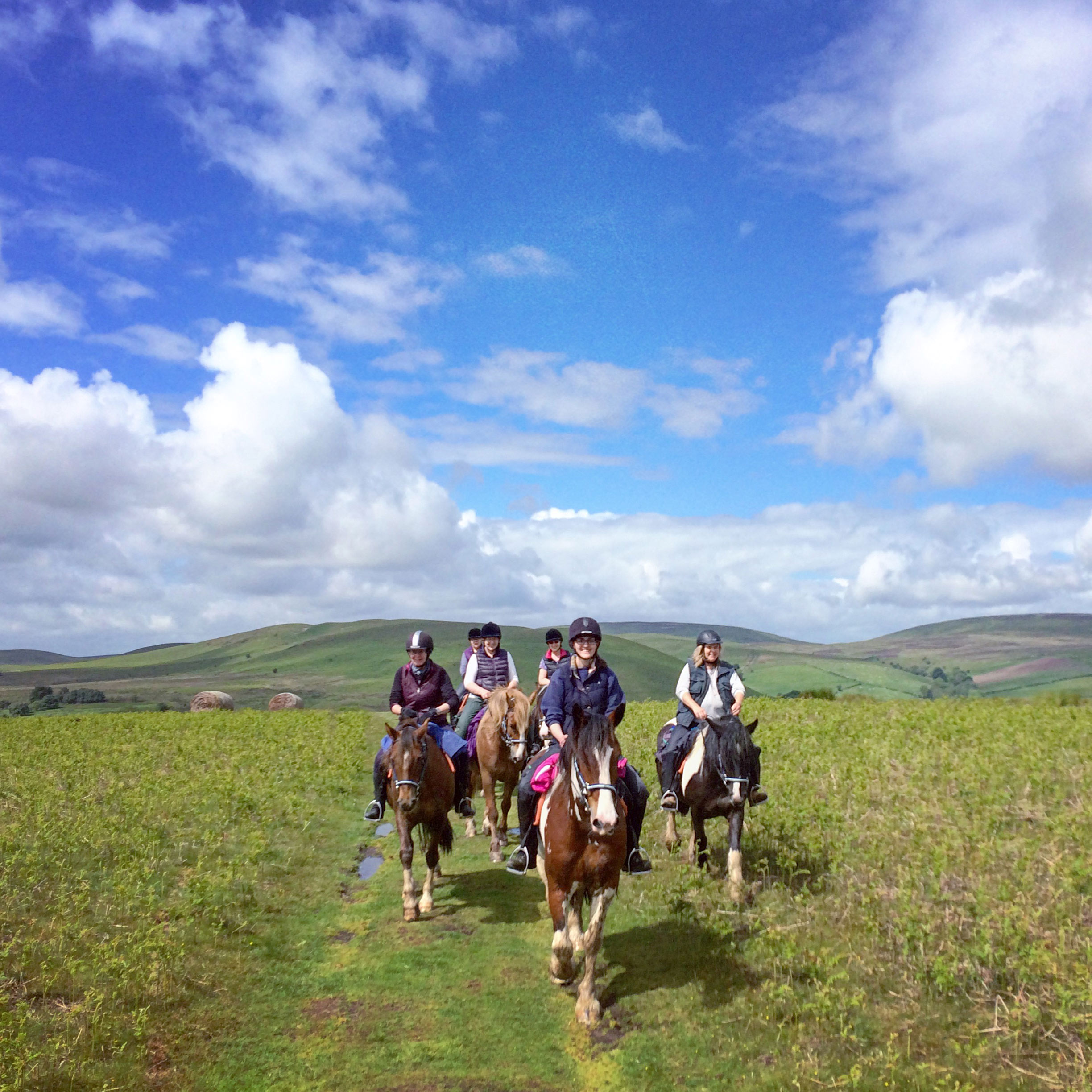 Riding holidays welsh prince trail