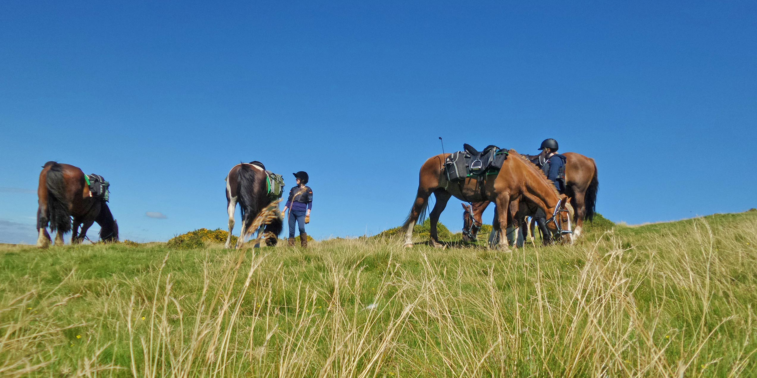 self guided horse riding holidays