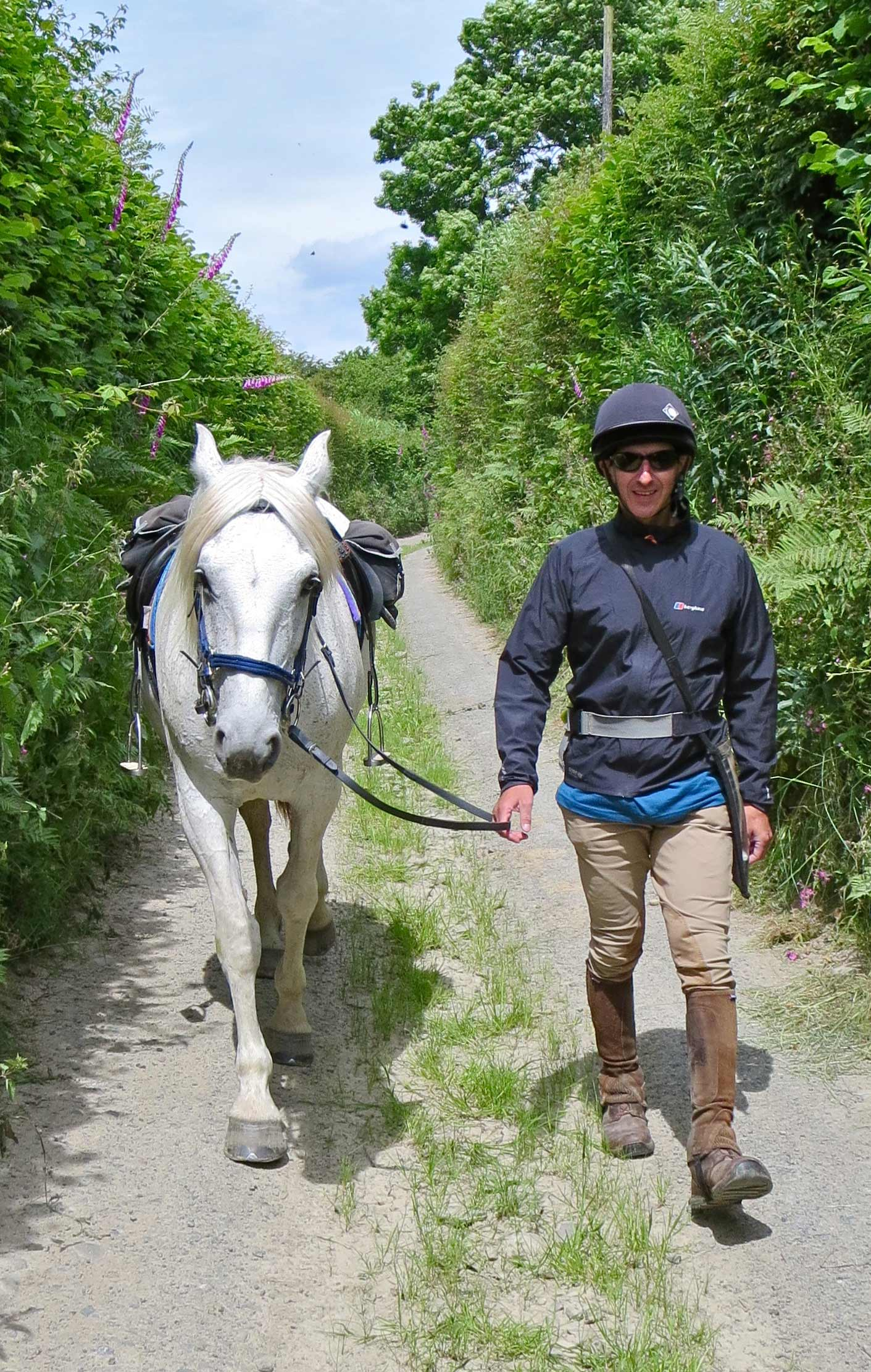 trail riding hergest trail
