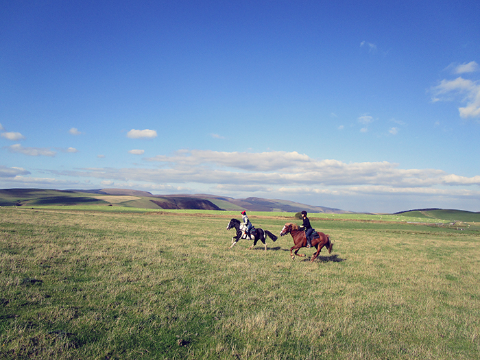 There are plenty of wonderful canter opportunities