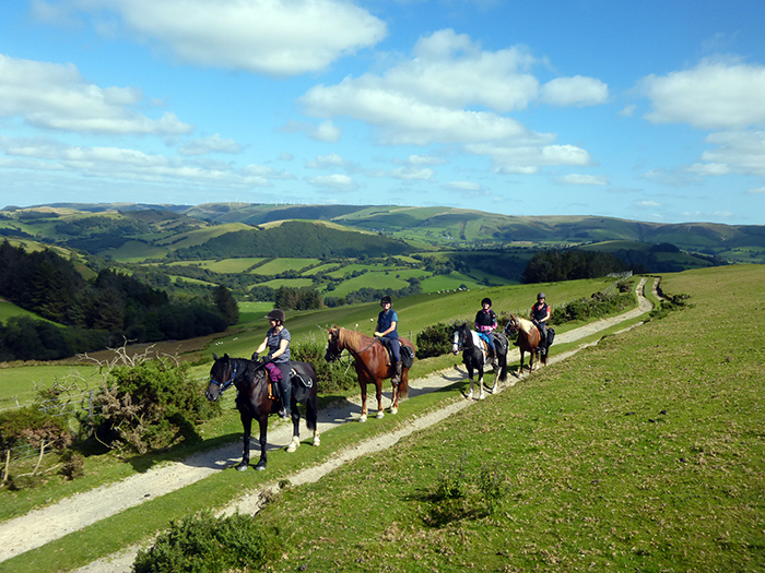 Experience trails with breathtaking scenery on a Freerein horse riding holiday.