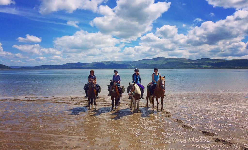 Horses and riders at Ynyslas beach at the end of the Trans Cambrian South