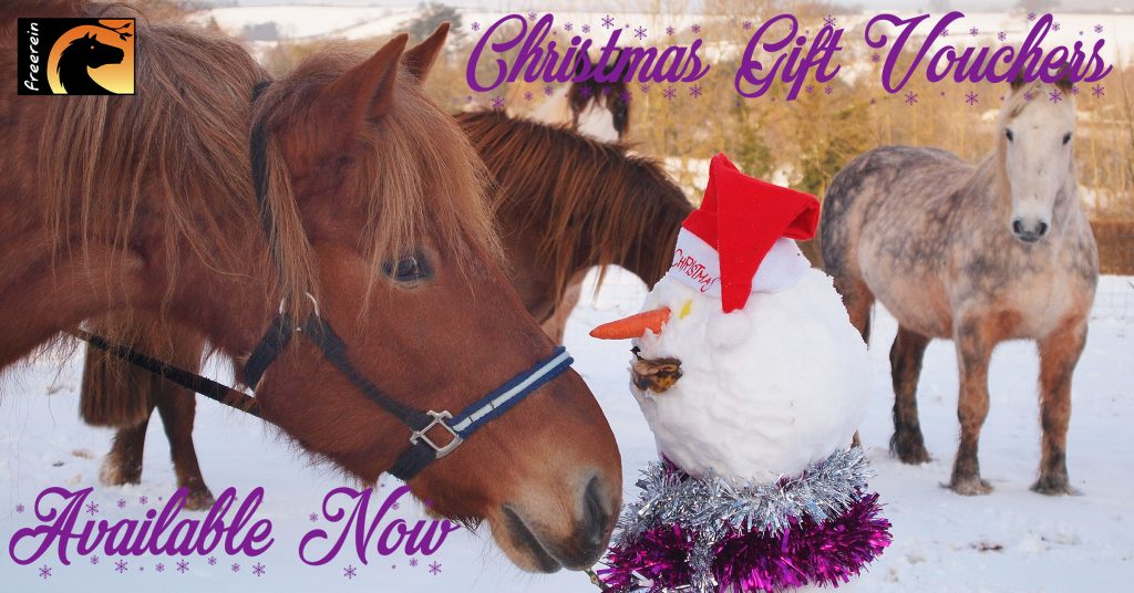 Freerein Christmas gift vouchers are available now