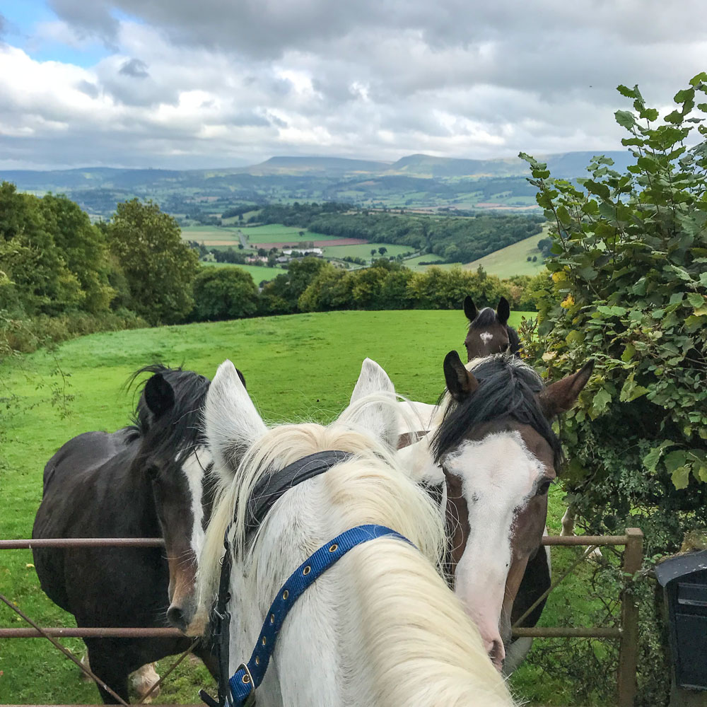 Stunning views of the Black Mountains in the lanes above Glasbury